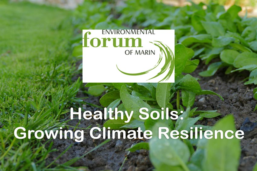 Kahl Consultants EFM Healthy Soils Growing Climate Resilience