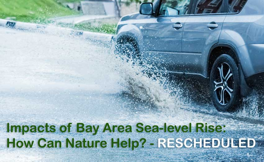 Kahl Consultants Enviromental Forum of Marin Impacts of Bay Area Sea level Rise Rescheduled