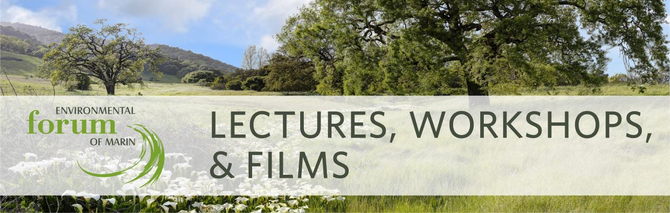Lectures Workshops Films