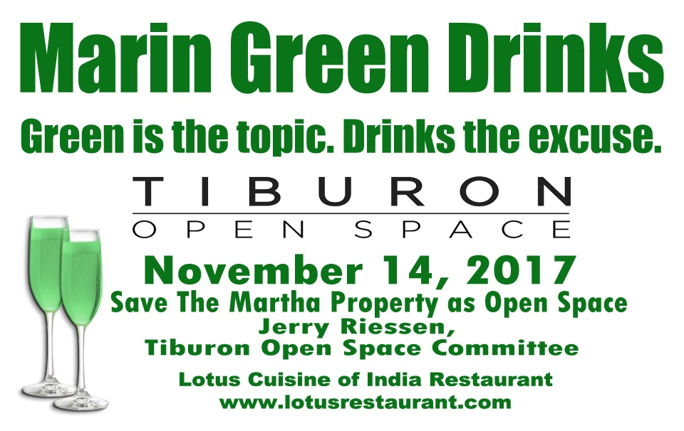 November 14 Marin Green Drinks