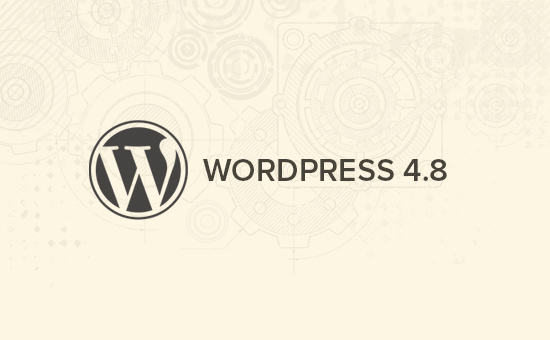 Wordpress 4.8 Update